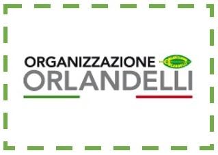 ESPOSITORE GAME 2015 - ORGANIZZAZIONE ORLANDELLI